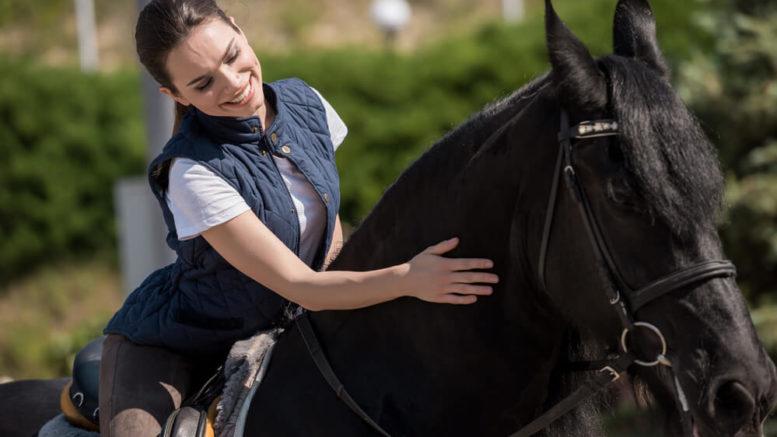 Krankes Pferd